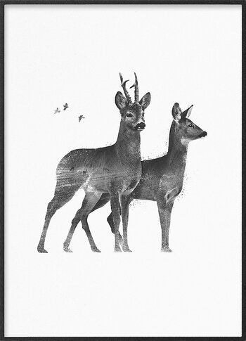 Roedeer couple