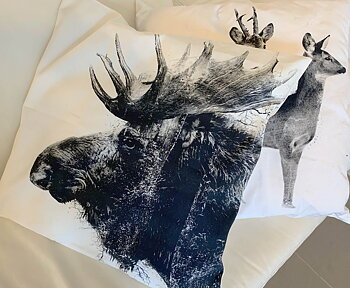 Moose by forest - Pillow case 50x50 cm