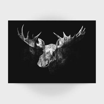 Moose black