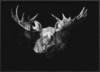 Elg svart