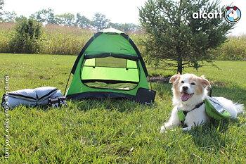 Alcott explorer äventyrs tält
