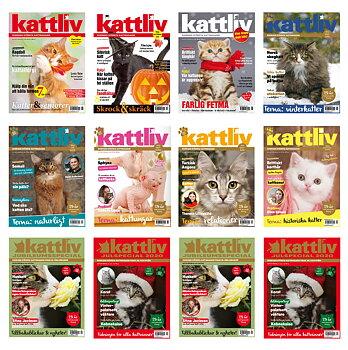 Gåvoprenumeration Kattliv + Kattliv Presenterar 8+4 nr Utland
