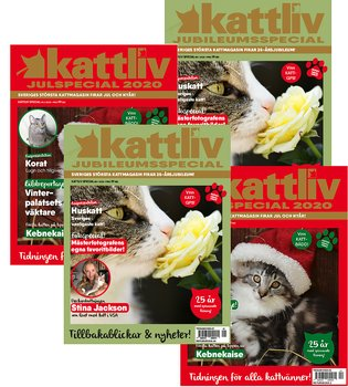 Prenumeration Kattliv Presenterar 4 nr Sverige