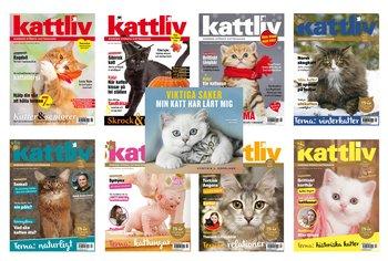 Prenumeration helår 8 nr Sverige med premiebok Viktiga saker min katt har lärt mig