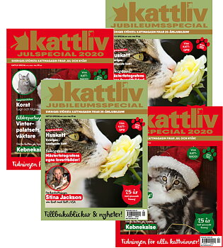 Rabatterad prenumeration Kattliv Presenterar 4 nr Sverige