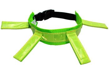 Halsband-Reflex, Jakthalsband