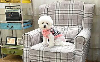 Puppia Hundtröja Elyse Rosa