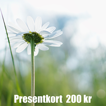 Presentkort 200 SEK