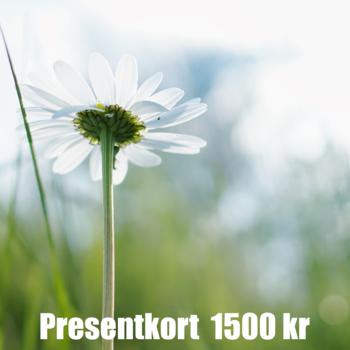 Presentkort 1500 SEK