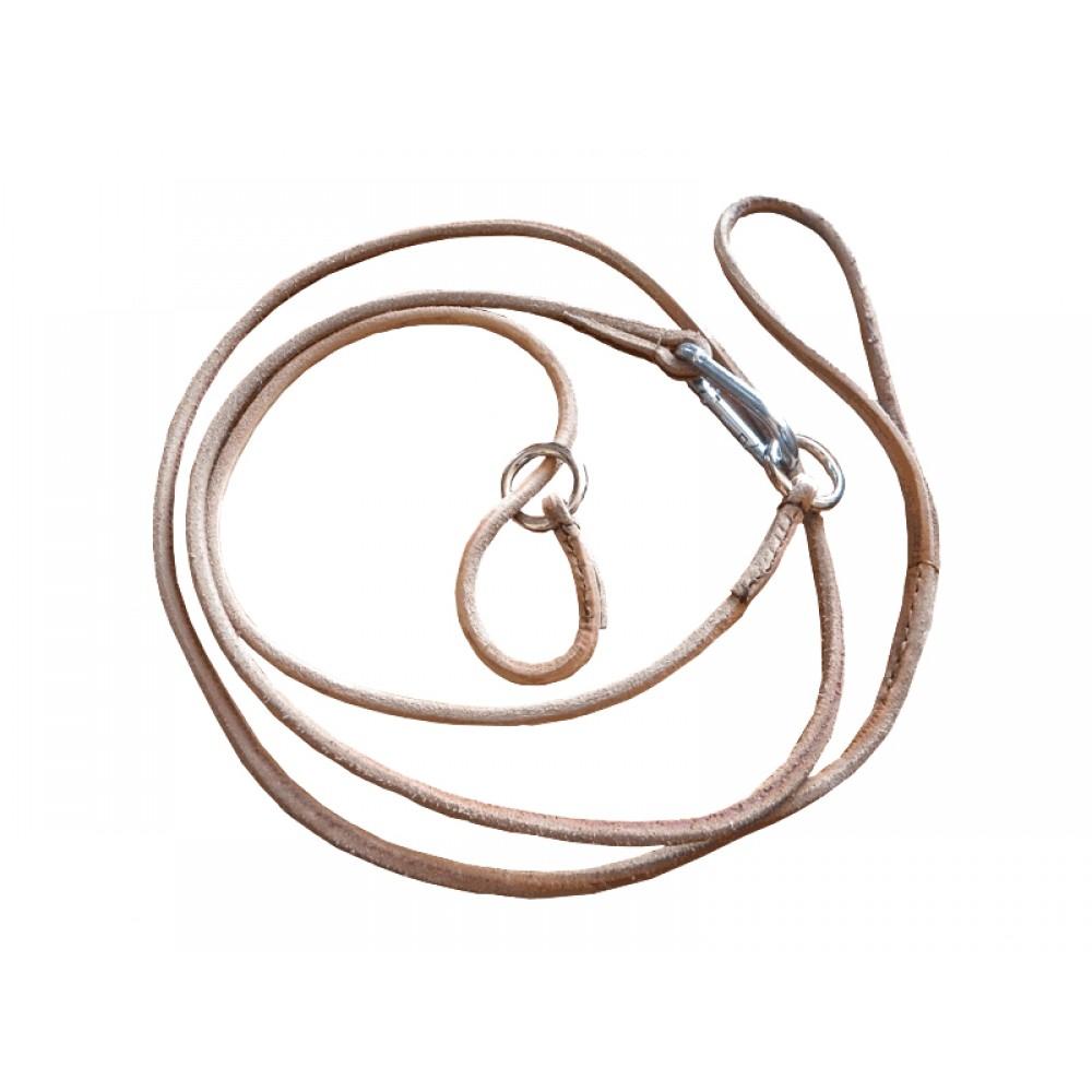 Hund Koppel / Halsband