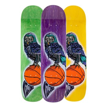 Welcome Skateboards Hooter Shooter on Bunyip 8.0""