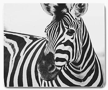 Zebra huvud svart vit 2 - musmatta