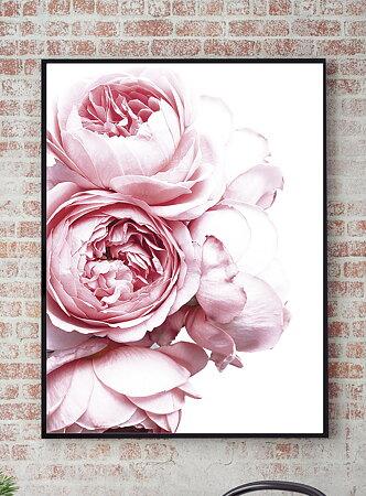 PINK ROSE NO.2 POSTER