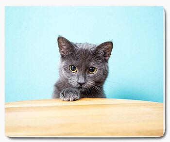 Grå svart katt 11 - musmatta