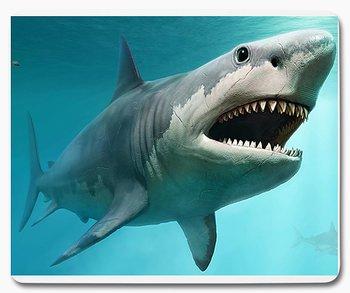 Haj med tänder 1 musmatta
