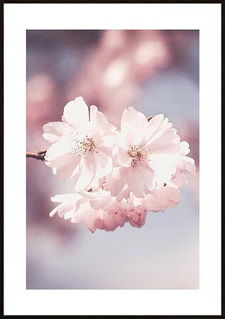 Blommor natur 45 - poster