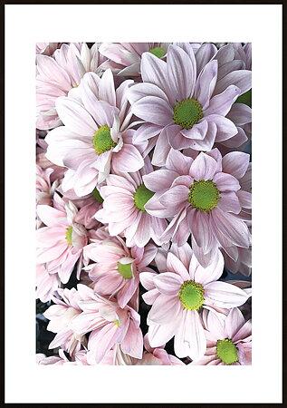 Rosa blommor ram 7 - poster