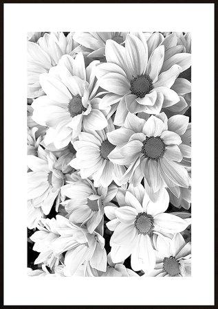 Rosa blommor ram 8 svart vit - poster