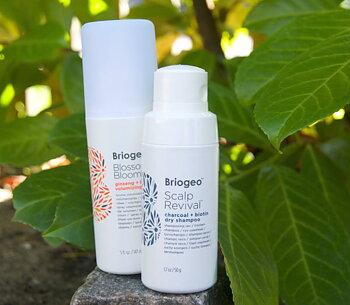 Paket för håret, Hårspray & Torr-schampo
