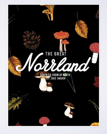 Great Norrland Shroom Poster
