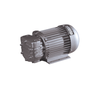 Dry vane pump Mil's Arica 6VK 0,25 kW/1450 rpm 1-phase