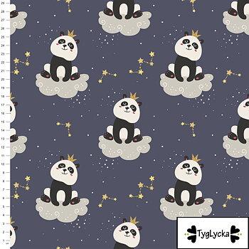 Panda in the sky