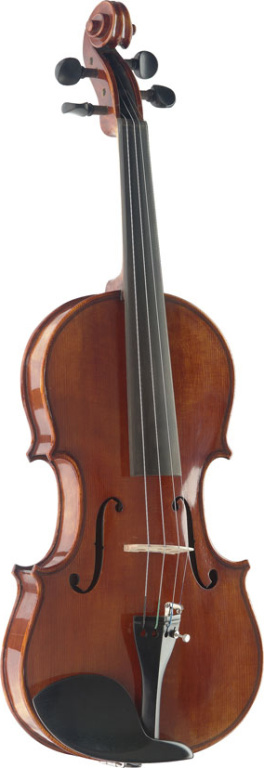 4/4 Violin & Deluxe Softcase