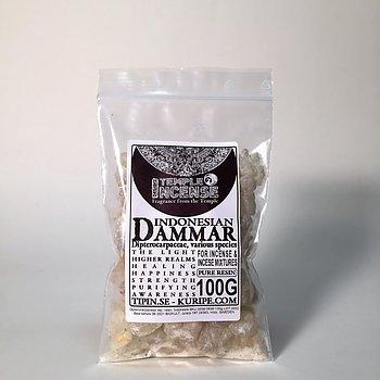 Dammar (Canarium strictum)