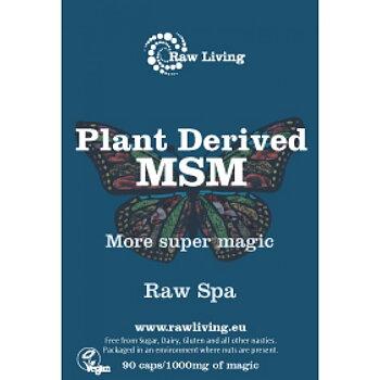 MSM Crystals (Methylsulfonylmethane) - Plant Derived - 90 caps/1000mg