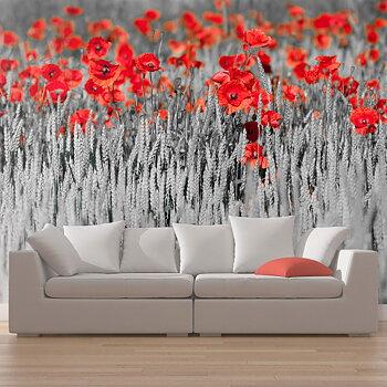 Fototapet - Röd vallmo på svart och vit bakgrund