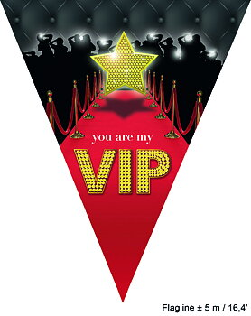 Flaggbanner VIP Party , 5 m