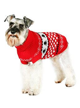 Tröja White Snowball - Urban Pup