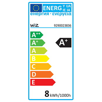 WiZ WiFi Smart LED E27 A60 60W Färg 2-pack+Fjärr