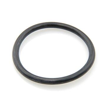 O-ring  gasklocka
