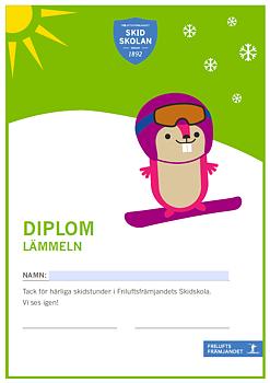 Diplom Lämmeln Snowboard - 20-pack