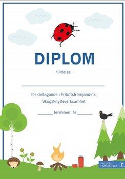 Diplom Skogsknytte Blå - 20-pack