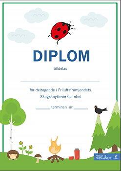 Diplom Skogsknytte Grön - 20-pack