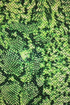 REPTILE - grön/ 10-m klipp