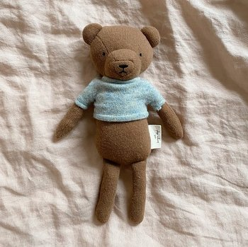 Theodor the teddy - Konges Slöjd