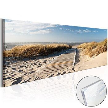 Wild Beach [Glass]