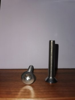 TORX screw M8 50mm x2