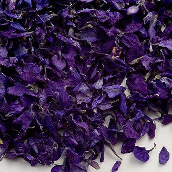 Delphinium Petals - Purple