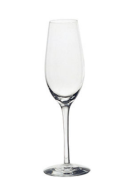 Merlot Champagne Glass