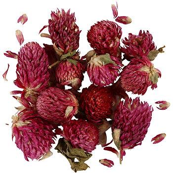 Torkade blommor, lila, Rödklöver, L: 1,5-2,5 cm, dia. 1 - 1,5 cm, 15 g, 1 förp.