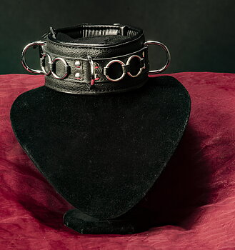 BDSM collar with details