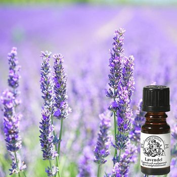 Lavendel Doftolja 10ml - Interlam