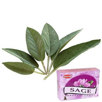 Salvia Rökelsekoner HEM