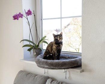 Fönsterbädd
