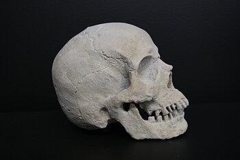 """Dekoration - Skull """"Human"""""""
