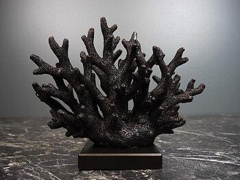Dekoration  - Black Coral